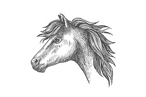Farm horse isolated sketch