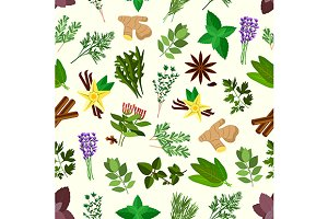 Spicy herbs and condiments pattern