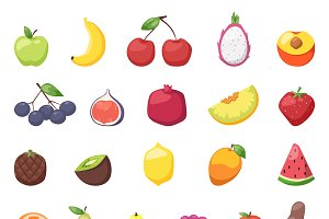 Fruits berries vector illustration