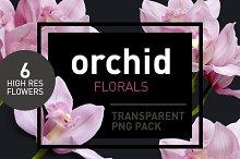 Orchid Florals - Transparent Flowers