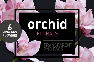 Orchid Florals - Transparent Flowers
