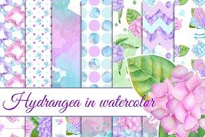 Hydrangea papers