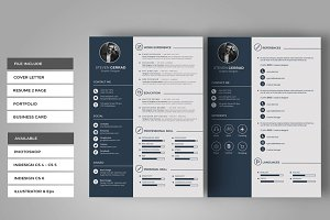 Clean CV-Resume