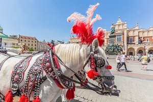 Traditional horse carriage, Cracow.