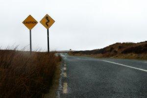 Bends ahead