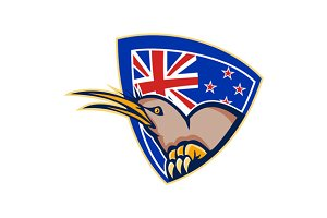 Kiwi Bird New Zealand Flag Shield