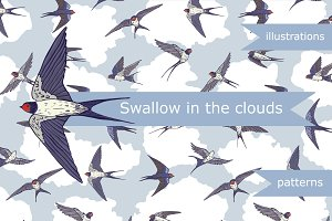 Swallow in the clouds
