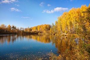 Beautiful autumn landscape.