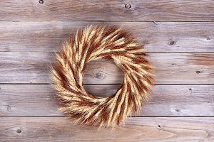Dried Wheat Stalk Wreath
