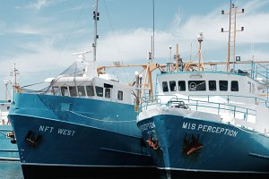 Fishing boat 'MIS Perception'
