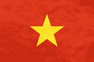 True proportions Vietnam flag