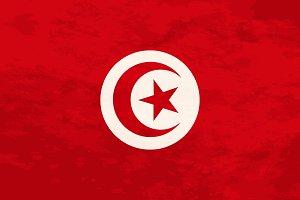True proportions Tunusia flag