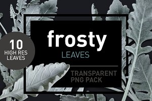 Frosty Leaves - Transparent Pngs
