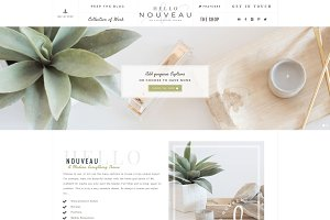 Hello Nouveau Wordpress Theme