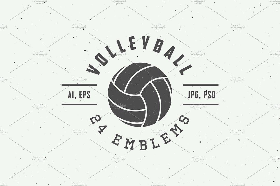 Set of vintage volleyball emblems ~ Logo Templates