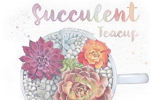Succulent Tea-Cup.