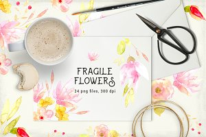Fragile Flowers