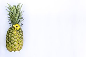 Pineapple w/ flower white background