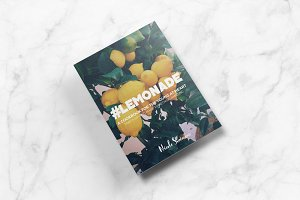 #Lemonade Cookbook