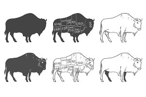 Buffalo Illustration with Cut Scheme