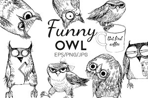 Funny owl collection