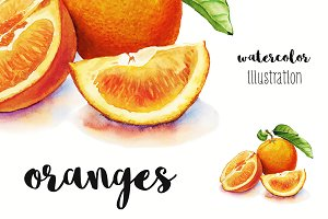 Oranges watercolor illustration