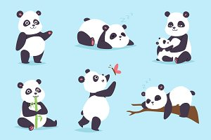 Panda bear vector set