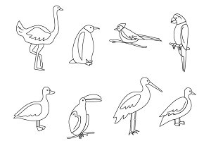 Set of thin line birds icons
