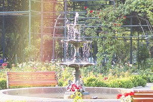 Secret Fountain View