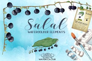 Salal Watercolour Elements