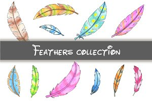 Fantastic colored feathers