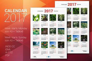 Calendar Poster 2017