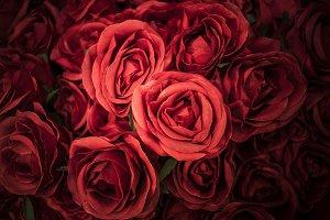 Retro roses flower background