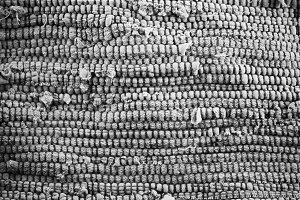 Woven Rug, material, fabric, B&W