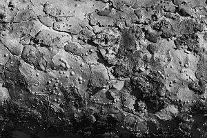 Abstract, Bark, B&W, texture