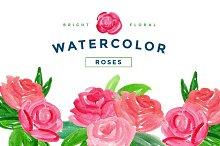 Bright Roses Watercolor PNG