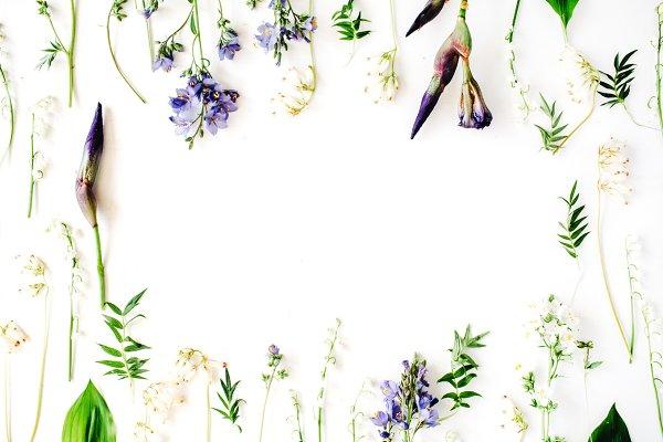 Floral frame with iris
