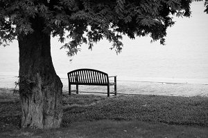 Lonely park bench in black and white