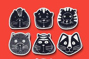 Stylish muzzle Cats
