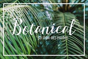 Botanical. 30 Hi-res photos