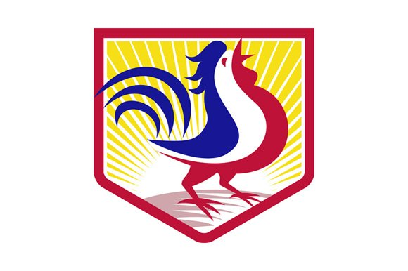 Rooster Cockerel Crowing Crest
