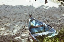 fishing boats anchored in the beach sand between trees