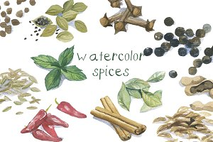 Watercolor Spices Clip Art