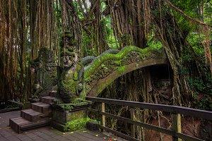Dragon Bridge in Monkey Forest, Bali