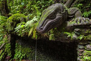 Giant Lizard in Sacred Monkey Forest Sanctuary, Ubud, Bali