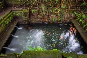 Holy Spring Temple, Ubud, Bali