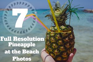 7 Hi-Res Pineapple Photos Bundle