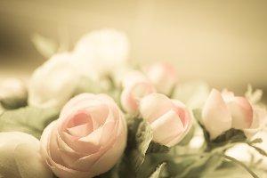 vintage color roses for background