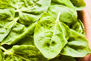 The spinach leaves