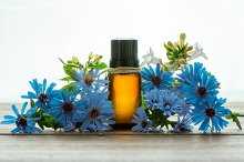 Essential oil, and blue flowers